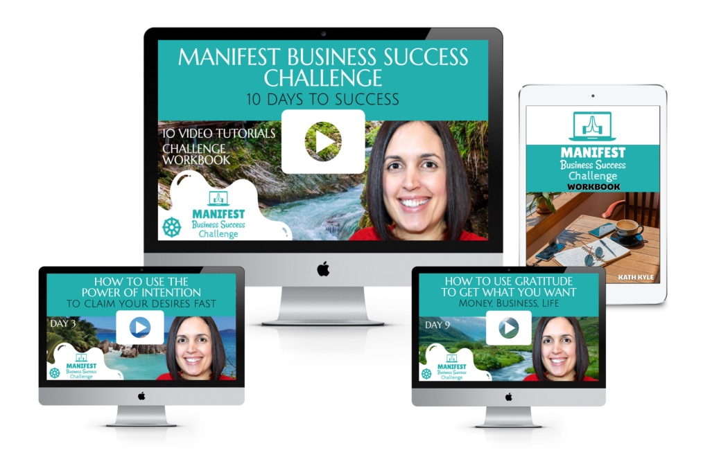 Manifest Business Success Challenge