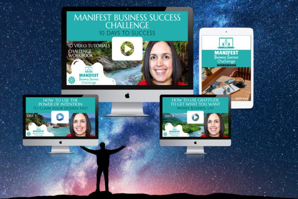 Manifest Business Success Challenge